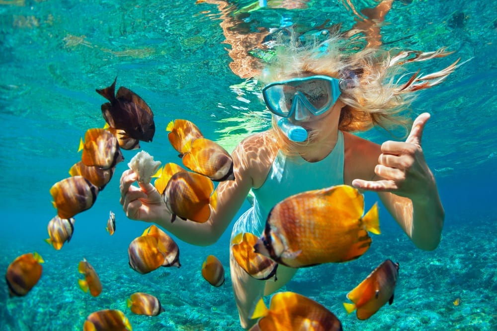 woman snorkeling with fish.