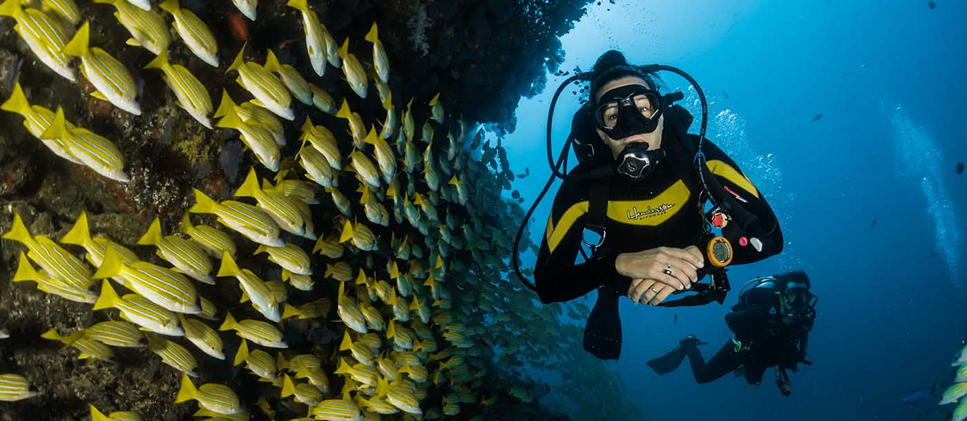 Scuba diver with a school of fish.
