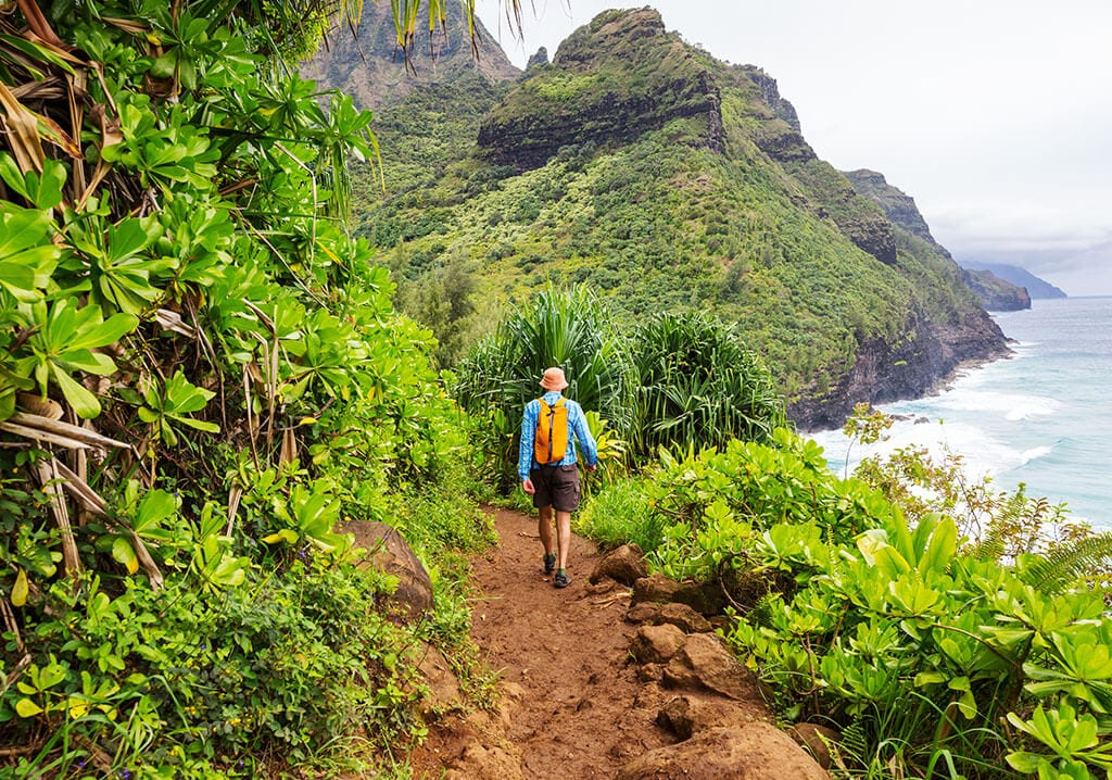 Person hiking a tropical trail.