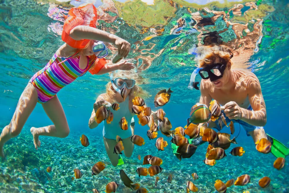 Photo of a Family Snorkeling, One of the Best Things to Do in Oahu with Kids.